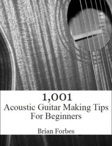 1001 acoustic guitar making tips for beginners book