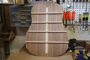 How-to-Make-an-Acoustic-Guitar-Series---Part-Six---Bracing-the-Back-finished-back-bracing