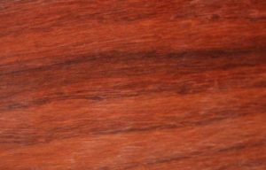 25 gorgeous wood species for making wooden rings padauk